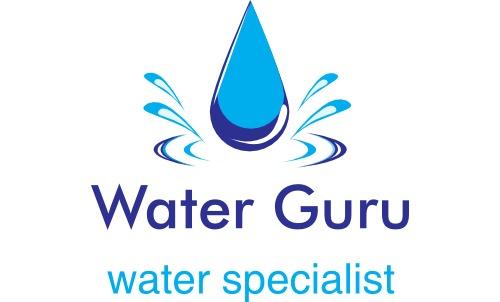 Water Testing Domestic Water Filters Waterguru Water